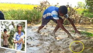 Hand Fish Catching! Amazing Boy Catch Fish and cook them using Bamboo - Cambo Village Lifestyle